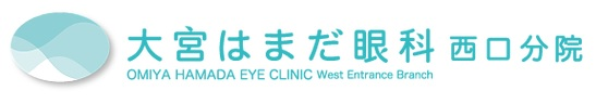 DeepEyeVisionを診療でご利用いただいております。